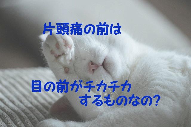 目をおさえている猫ちゃん