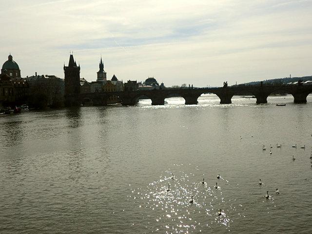 プラハ マーネス橋