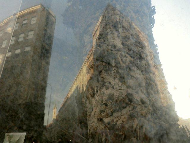 ウィーン釘の樹株