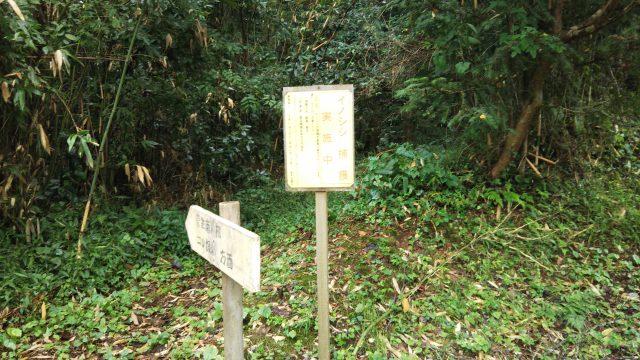 菅生高校グラウンドへの道