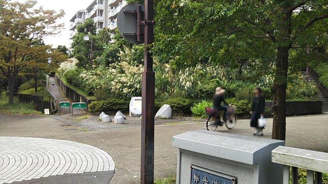 南大沢遊歩道