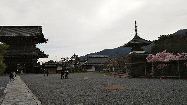 嵯峨清凉寺