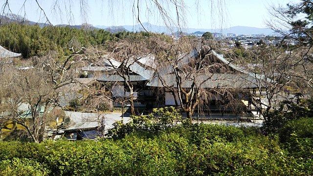 天龍寺望京の丘